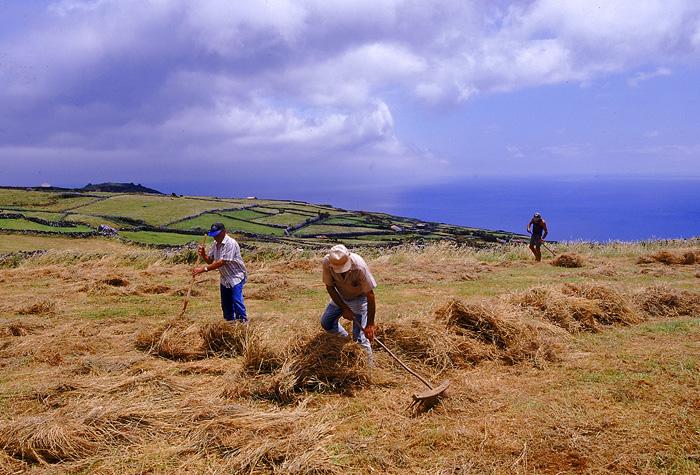 azores isla corvo 1 - Azores, nueve islas, nueve mundos por descubrir