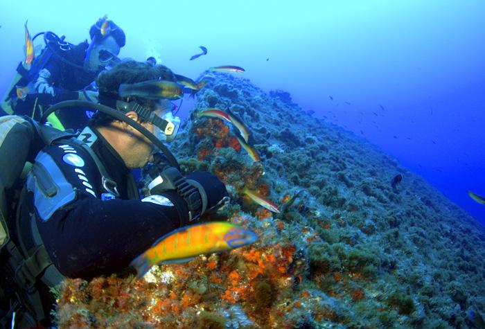 azores isla graciosa2 1 - Azores, nueve islas, nueve mundos por descubrir