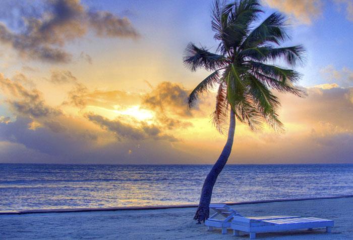 costa oeste isla mauricio