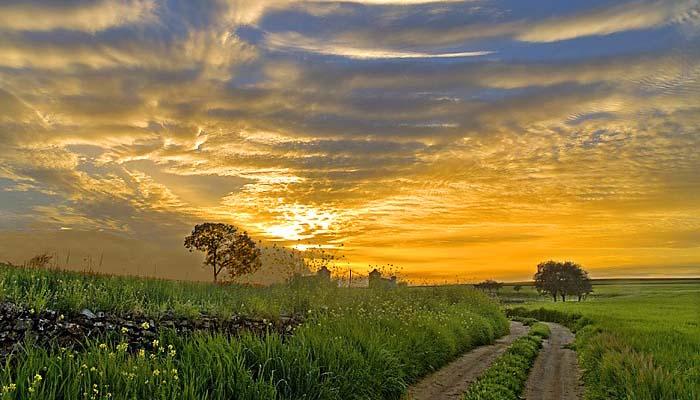 extremadura paisajes 1 - Extremadura, la tierra de privilegios
