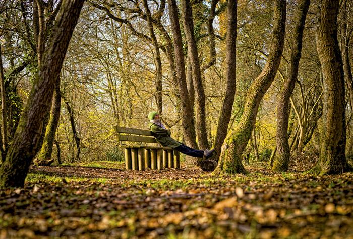 parque Zabalgana Vitoria Gasteiz 1 - Vitoria-Gasteiz, la conocida ciudad verde