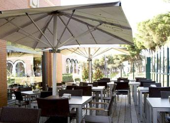 restaurante cafe pino moraleja 1 - Tortilla de Café Pino, la tortilla que se lleva