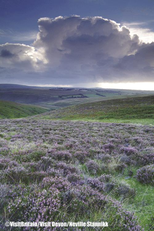 Brendon Common Exmoor Devon ©VisitBritainNeville Stannikk - Rincones con encanto en Gran Bretaña