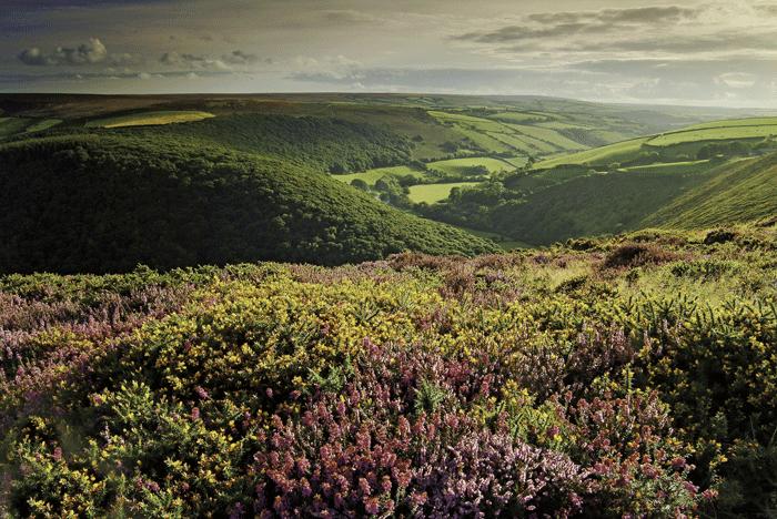 County Gate Exmoor Devon ©VisitBritainNeville Stannikk - Rincones con encanto en Gran Bretaña