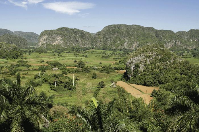 viñales - Valle de Viñales: donde nace el tabaco