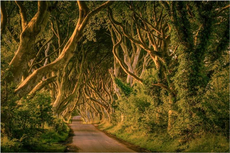 Irlanda transformers - Cinco destinos para decir adiós a la soltería de una forma original