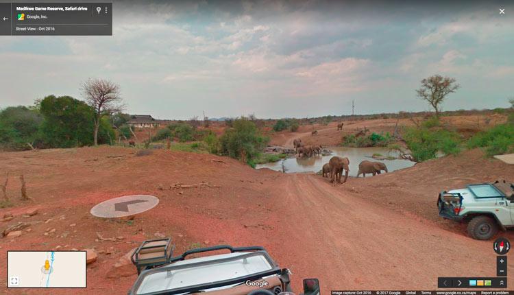 Madikwe Game Reserve Google Street View Sudáfrica - Google Street View: la nueva forma de conocer los Parques Nacionales de Sudáfrica