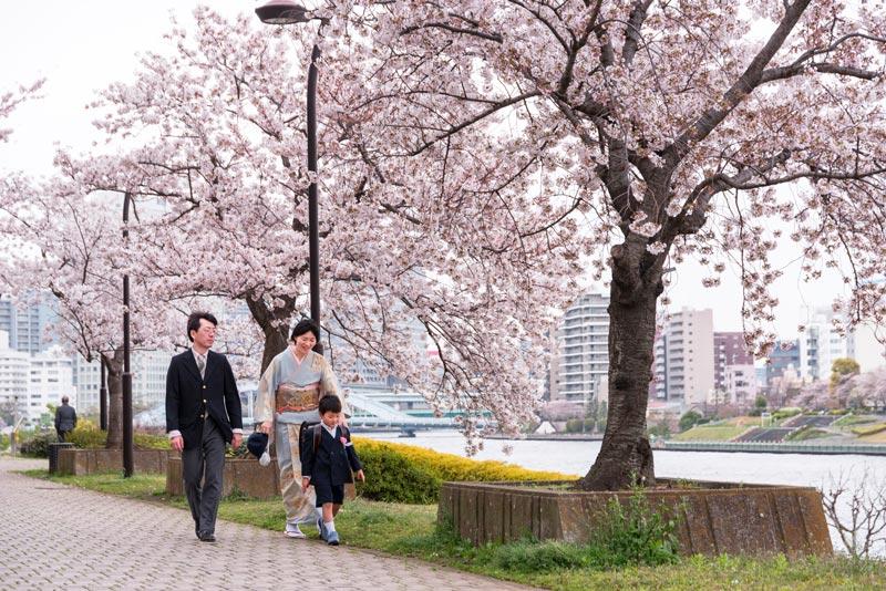 """Cherry blossoms along Sumida gawa River 02 - Bocados con sabor a """"hanami"""" en Semana Santa"""