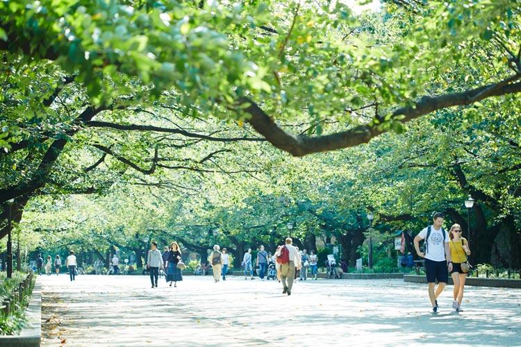 Ueno ParkTokio - Un verano tokiota de festival y color