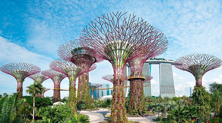 Aeropuerto Changi Singapur - Los 5 mejores aeropuertos para hacer escala
