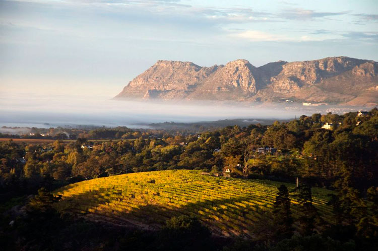Cape Wine Route Sudafrica - Cinco razones para visitar Sudáfrica