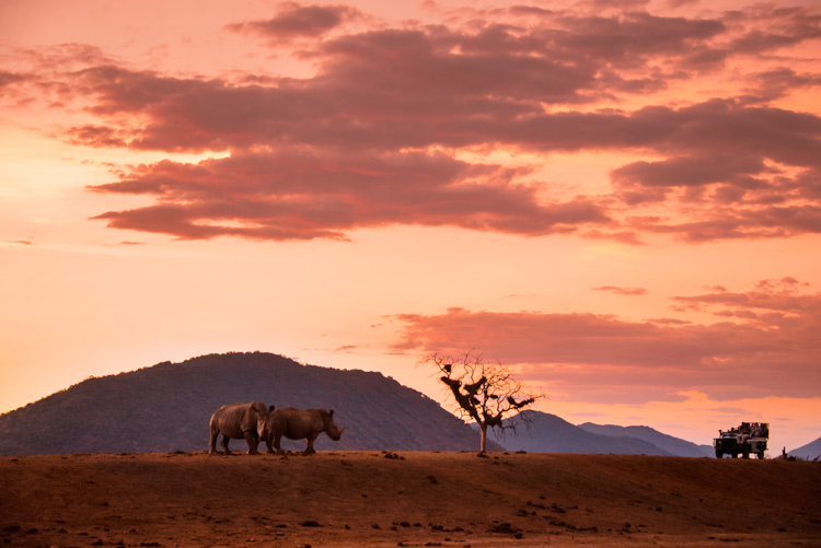 Sudáfrica Parque Nacional Kruger - Cinco razones para visitar Sudáfrica