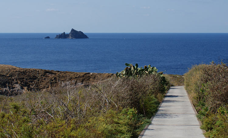 03 Islas Columbretes Castellon de la Plana España - ISLAS COLUMBRETES, LA JOYA NATURAL MARINA DE CASTELLÓN DE LA PLANA