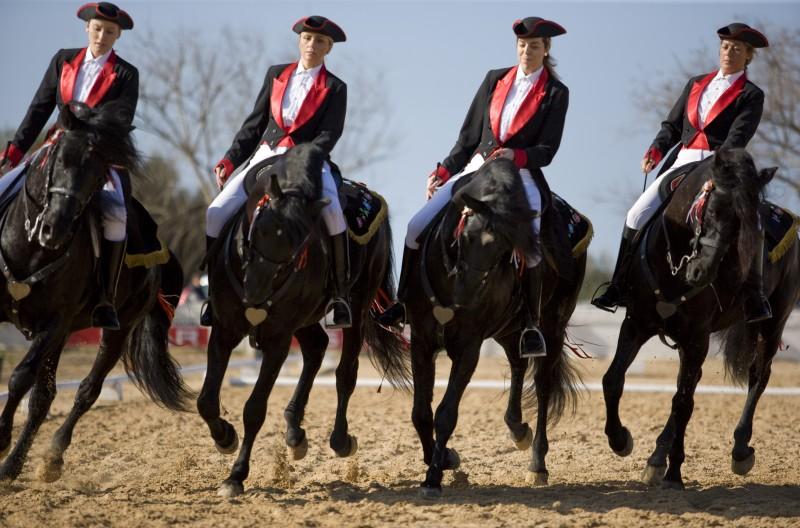 Caballo Pura Raza Menorquina ATB - Camí de Cavalls: 20 itinerarios ecuestres para descubrir la belleza de Menorca