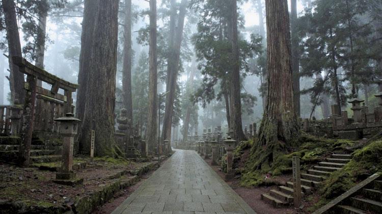 Japón rutas religiosas Kumano Kodo cordillera de Kii el Monte Koya 2 - Las rutas espirituales de Japón