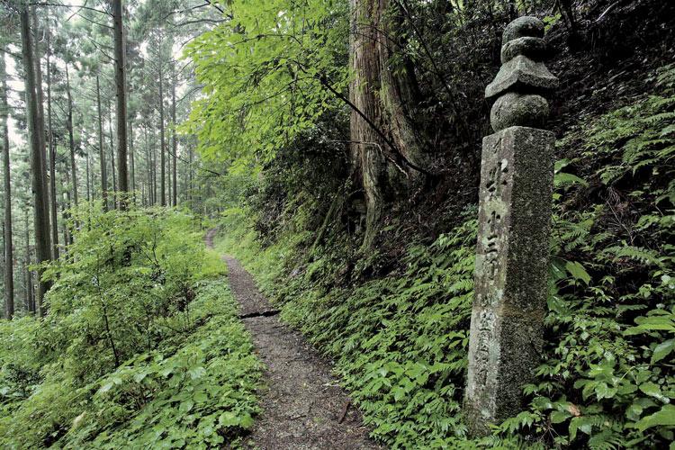 Japón rutas religiosasMt. Koya. World Heritage Temple Silence Koyasancho ishimichi - Las rutas espirituales de Japón