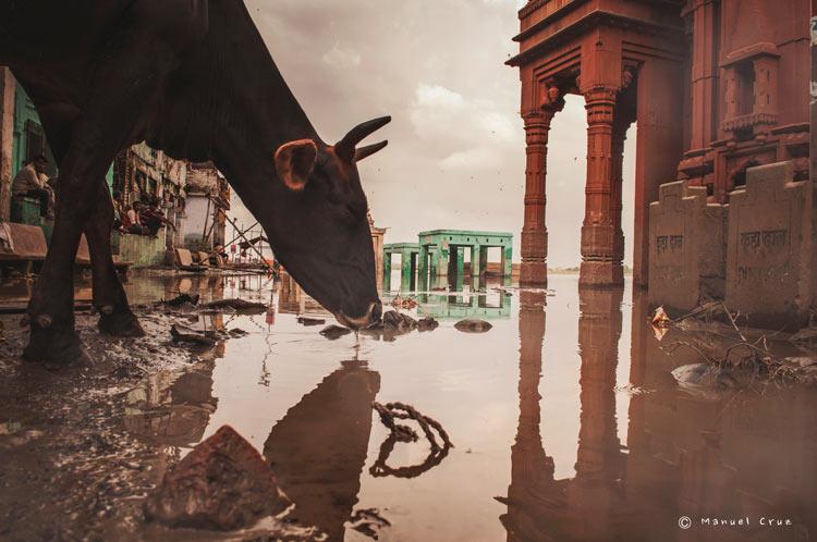 MCC India Varanasi 0057. India un viaje de leyenda © Moisés Alonso Manuel Cruz - India, un viaje de leyenda
