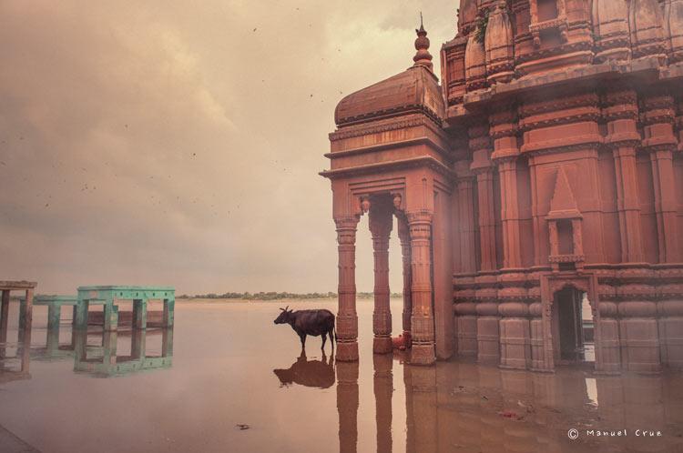 MCC India Varanasi 0063. India un viaje de leyenda © Moisés Alonso Manuel Cruz - India, un viaje de leyenda