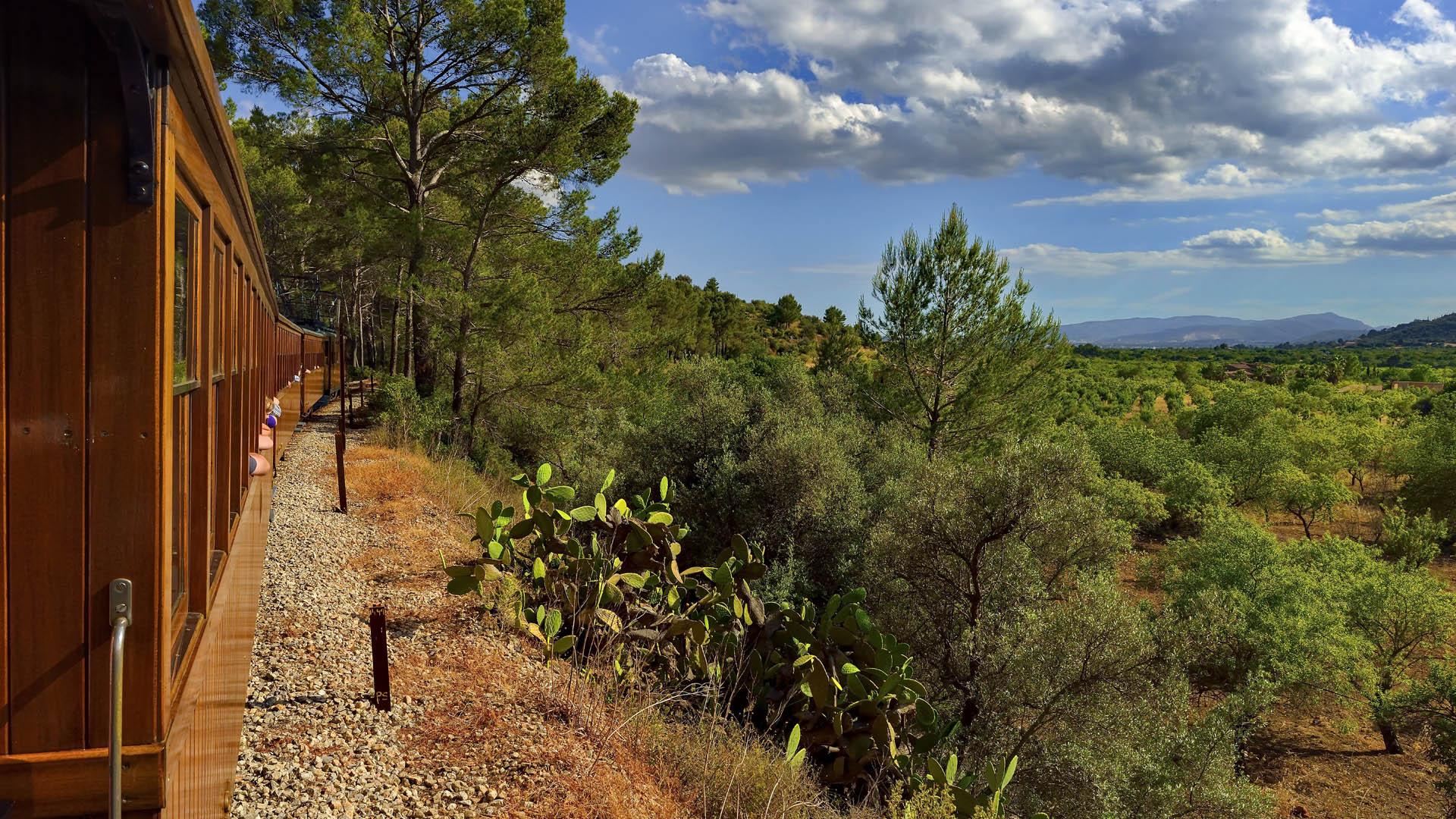 Valle Naranjos AETIB 2 - Paisajes de otoño en Mallorca: Viaje en tren al Valle de los Naranjos de Sóller