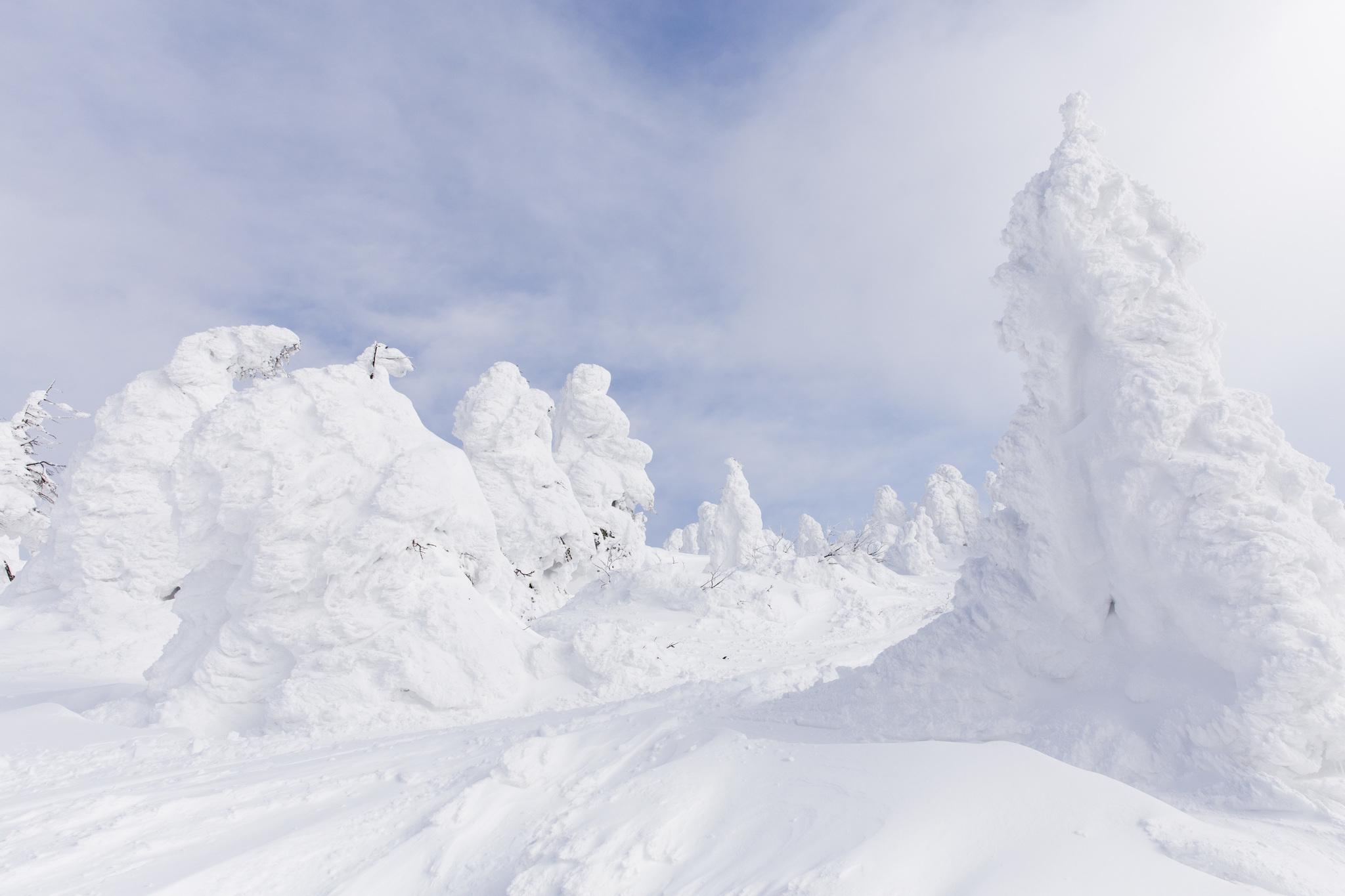 Zao ski©JNTO 2 - Japón inicia su temporada de esquí