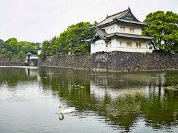 Palacio Imperial de Tokio JNTO 3  260x195 - Revista Más Viajes
