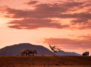 Turismo de Sudáfrica 1 300x220 - Revista Más Viajes