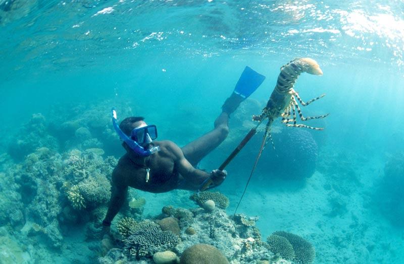 Miskitos Nicaragua mar pescador buceo langosta pesca © CSIRO Marine Research - Los enclaves naturales más impresionantes de Centroamérica