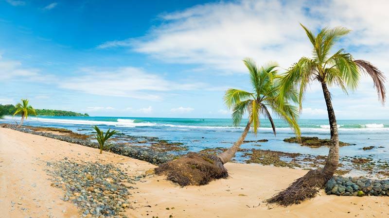 Panama bocas del toro playa mar arena palmeras © Göran Höglund Kartläsarn - Los enclaves naturales más impresionantes de Centroamérica