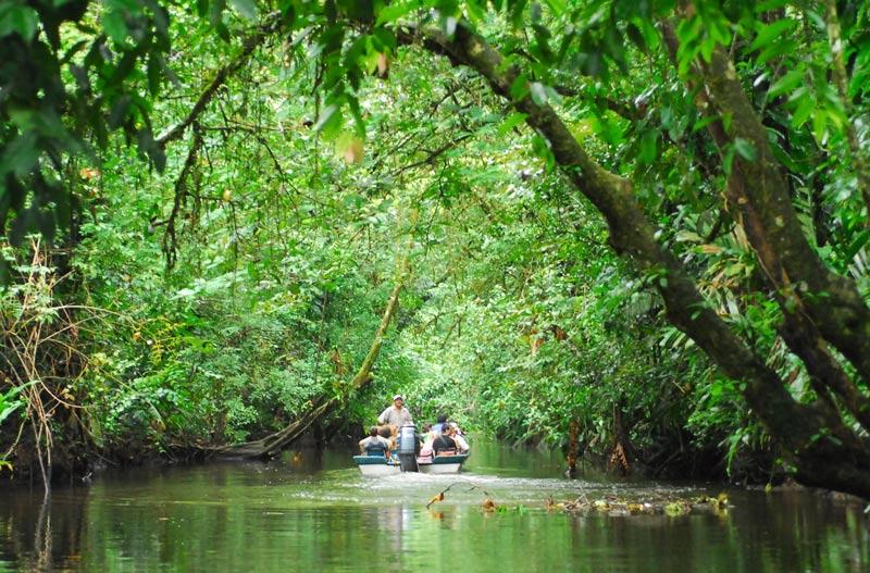 Tortuguero barca lancha rio manglar bosque Costa Rica © GRID Arendal - Los enclaves naturales más impresionantes de Centroamérica