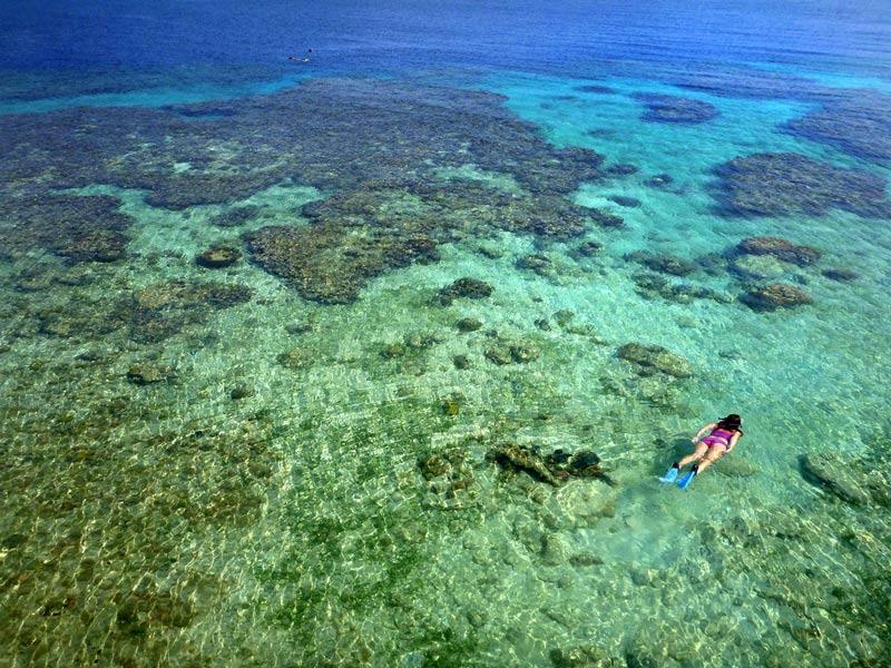 Utila Honduras Mar nadar mujer © Andrew Hall - Los enclaves naturales más impresionantes de Centroamérica