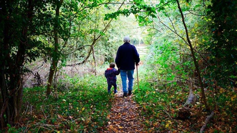 sendero bosque abuelo niño - El 76% de los abuelos españoles pasarán la Semana Santa con sus nietos