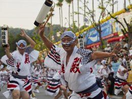 Awa Odori Dance Tokushima Shikoku ©JNTO 2  260x195 - Revista Más Viajes