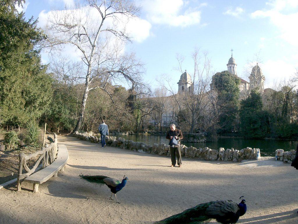 """Valladolid Parque del Campo Grande crédito WikimediaCommons 3 1024x770 - Las 10 ciudades más """"Bike-Friendly"""" de España"""