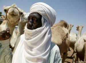 E25W1756 Ruta hacia el Gerewol Niger Tribus del Mundo © Asier Reino 300x220 - Revista Más Viajes