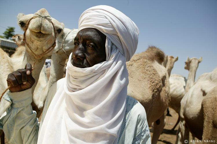 E25W1756 Ruta hacia el Gerewol Niger Tribus del Mundo © Asier Reino - Ruta hacia el Gerewol