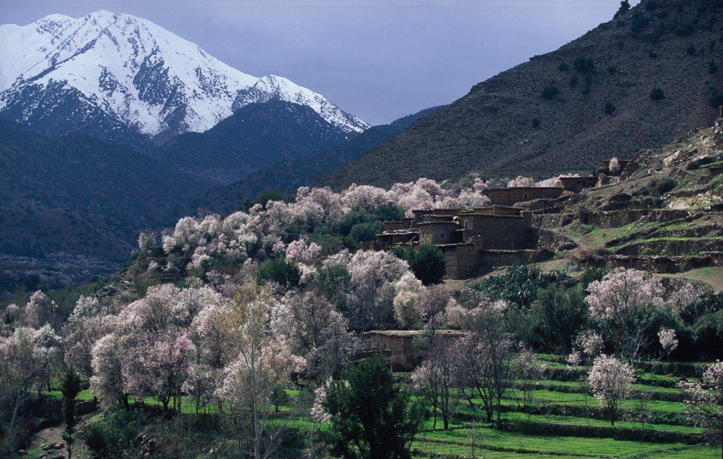 06 1024x651 - Marruecos, una ruta entre Atlas y desierto