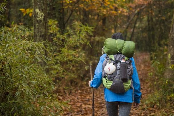 peregrino - Descubre el otoño en la ría de Muros-Noia