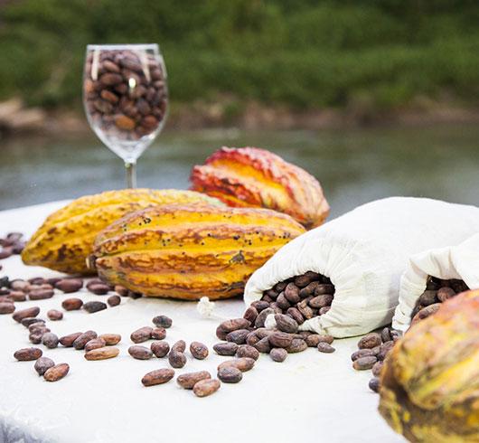 peru1 - Perú, sus chocolates y derivados del cacao, en el Salón Internacional del Chocolate