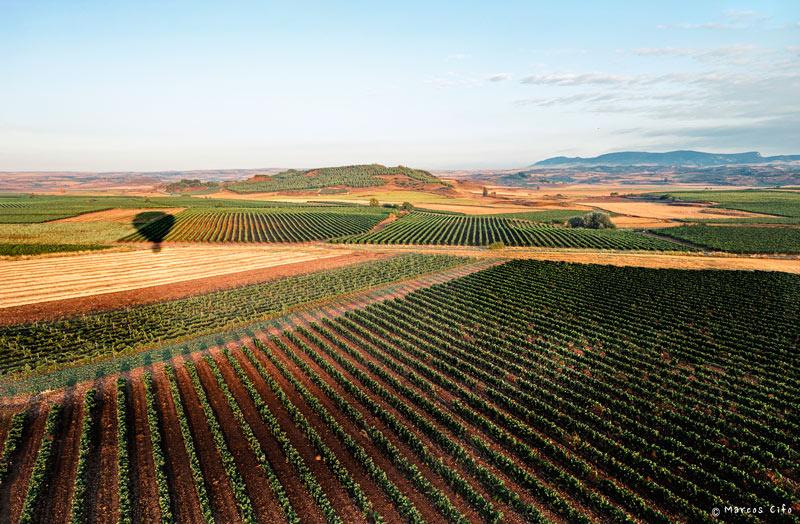 Cuzcurrita del rio Tiron La Rioja viñedos viñas panoramica globo DSF0173 © Marcos Cifo - La Rioja, 'un espectáculo sensorial'