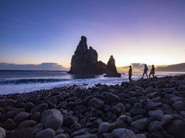 Madeira-puestadesol