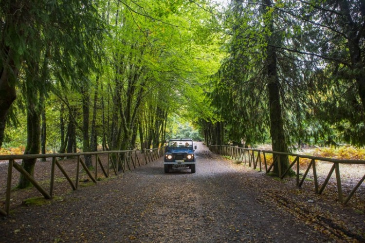 FormatFactoryFormatFactory252A7139 - Madeira, un paraíso que disfrutar durante todo el año