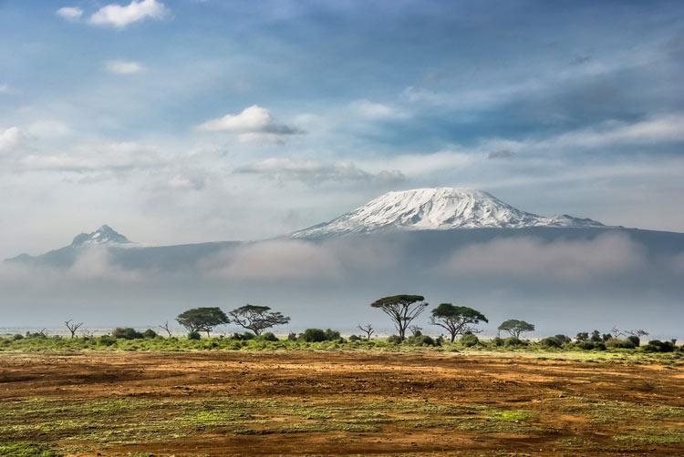 Kilimanjaro sabana montaña africa © Sergey Pesterev - Ethiopian Airlines lanza una promoción especial de invierno para explorar África