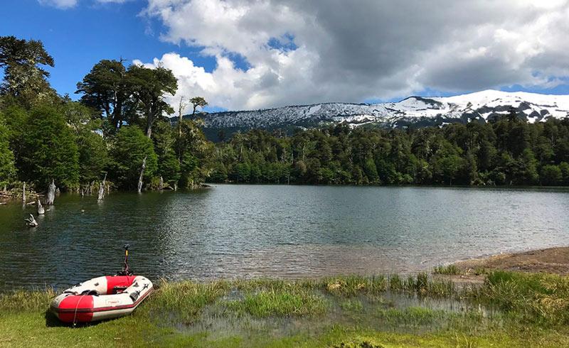 chile conguillo - ¿Te gusta ir de camping? Cinco lugares donde descubrir los paisajes secretos de Chile