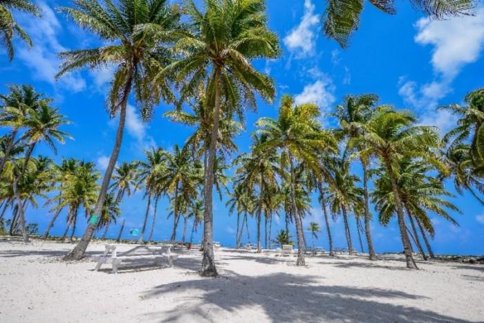 Belice playa cocoteros - Conozca los proyectos hoteleros más atractivos de Centroamérica