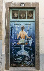 Madeira Puerta. © Rafael Vidal Sanz 186x300 - Madeira. Un jardín colgante.
