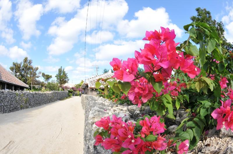 Okinawa © Y.Shimizu© JNTO. Okinawa Japón - OKINAWA,claves de la longevidad