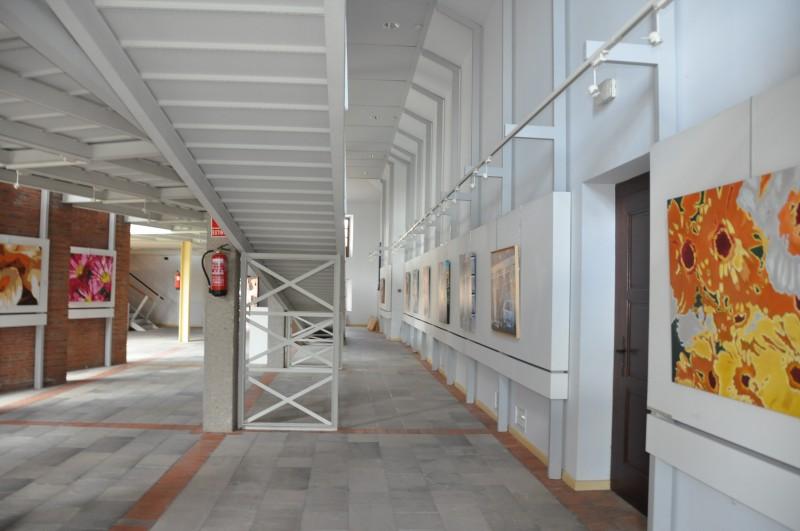 museo sasamon - Provincia de Burgos: donde los museos cobran vida