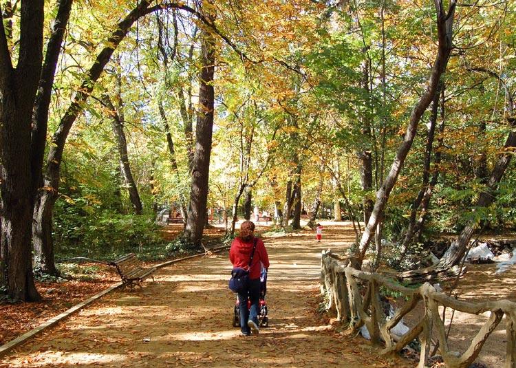 """Valladolid Parque del Campo Grande ©WikimediaCommons Ciudades Pulmon España - Fotos de: """"Ciudades Pulmón, el Top 10 español"""""""