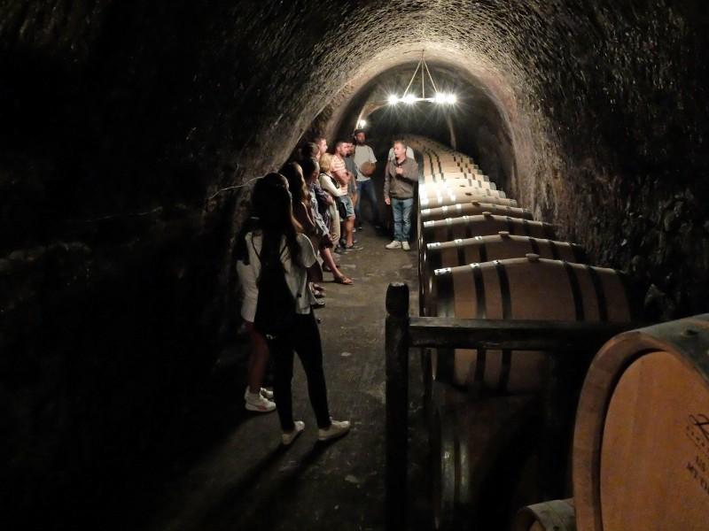 bodega Ruta Vino Ribera del Duero Toneles - La Ruta del Vino Ribera del Duero presenta su web como una eficaz herramienta de comercialización