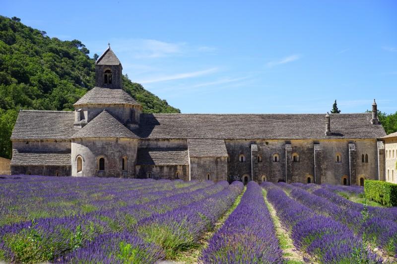 francia VAUCLUSE abbaye de senanque 1 1 - 15 razones para visitar Francia en los próximos meses